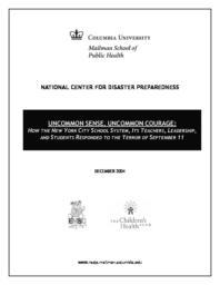thumnail for 9-11reportASSESSMENT.pdf