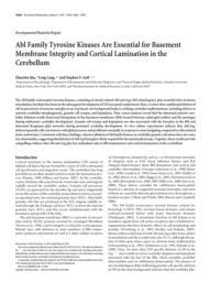 thumnail for 14430full.pdf