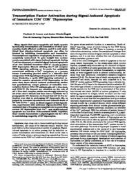 thumnail for JBC_1997_ivanov.pdf
