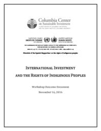 thumnail for Workshop-on-International-Investment-and-the-Rights-of-Indigenous-Peoples-Outcome-Document-November-2016.pdf
