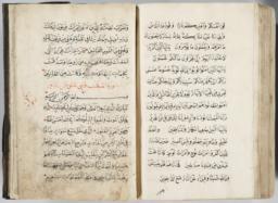 thumnail for Fig-4-Burke Arabic MS 3 fols.310b-311a.jpg