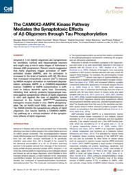 thumnail for Mairet-Coello_Neuron2013_S.pdf