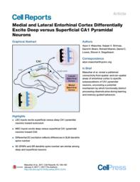 thumnail for Medial and Lateral Entorhinal Cortex Differentially Excite Deep versus Superficial CA1 Pyramidal Neurons.pdf