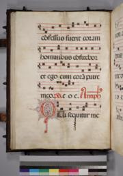 Leaf 043 - Verso