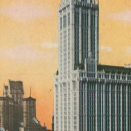 Woolworth Building, N.Y. Hi...