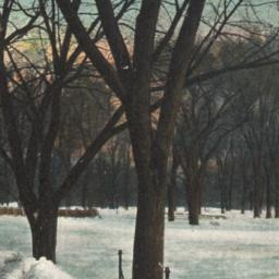 """""""Sleighing,"""" Central Park, ..."""