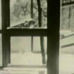 Frank Lloyd Wright at Falli...