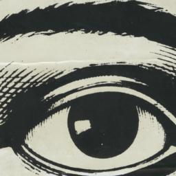 Eye bumper sticker