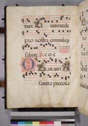 Leaf 155 - Verso