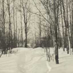 Winter on Vermilion Lake, M...