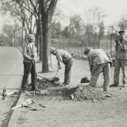 Men Digging near Street