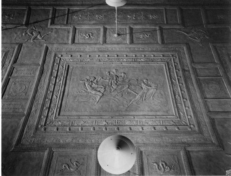 ceiling-butler-library