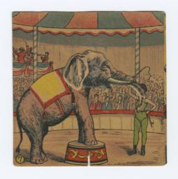 Elephant And Trainer Pantin