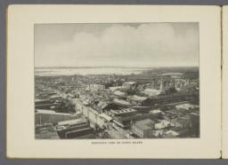 Bird's-eye view of Coney Island